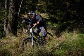 Photo of Stead CUTLER at Ballinastoe Woods, Co. Wicklow