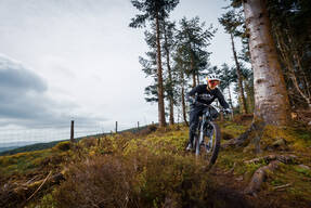 Photo of Andy PERRY at Dyfi Forest