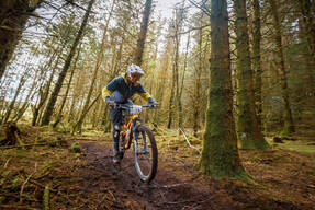 Photo of Dan MAGUIRE at Dyfi Forest