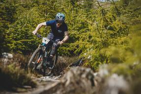 Photo of Garreth DAVIS at Ballinastoe Woods, Co. Wicklow