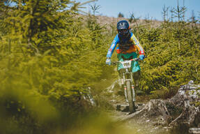 Photo of Jude DONOHUE at Ballinastoe Woods