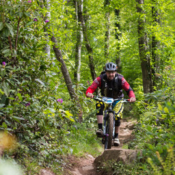 Photo of Neil GOLDSWORTHY at Big Wood, Co. Down
