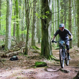 Photo of Enrique REPOLLES at Big Wood, Co. Down