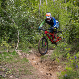 Photo of ? at Big Wood, Co. Down