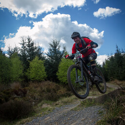 Photo of Damian SIDGWICK at Hamsterley