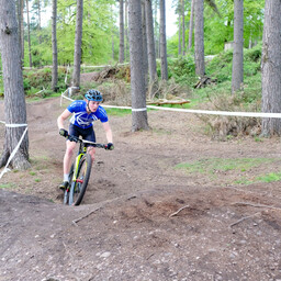 Photo of ? at Cannock Chase