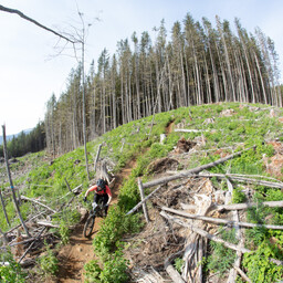 Photo of Josef KAINZ at Fraser Valley, BC