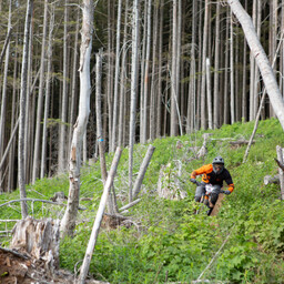 Photo of Jesse MAXWELL at Fraser Valley, BC