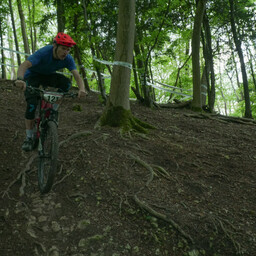 Photo of Theo FELLGETT at Queen Elizabeth Country Park
