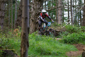 Photo of Daniel PRIESTLEY at Barnaslingan Forest