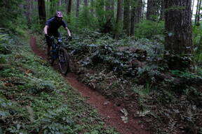 Photo of Peter HEGMAN at Capitol Forest