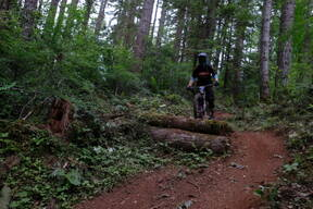 Photo of Hannah BERGEMANN at Capitol Forest