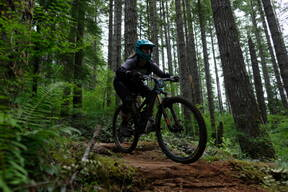 Photo of Terri COLE at Capitol Forest
