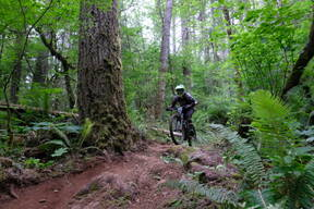 Photo of Ashley PASCOE at Capitol Forest, WA