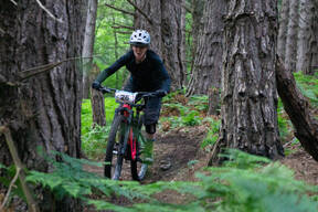 Photo of Bernie COMMINS at Barnaslingan Forest