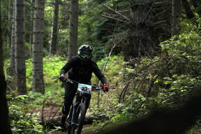 Photo of Lisa DAVIS at Barnaslingan Forest