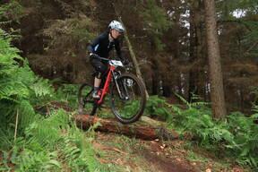 Photo of Bernie COMMINS at Barnaslingan Forest