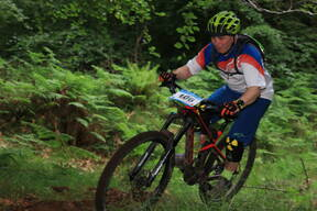 Photo of Patrick FOX at Barnaslingan Forest