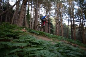 Photo of James SMYTH at Barnaslingan Forest