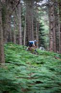 Photo of Philip HAYDEN at Barnaslingan Forest