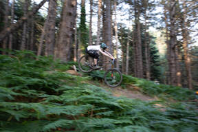 Photo of Dan REDMOND at Barnaslingan Forest