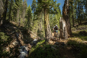Photo of Garrett HILL at Mt Shasta, CA