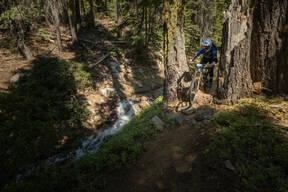 Photo of untagged at Mt Shasta