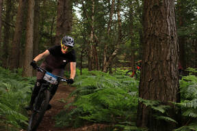 Photo of Luke BEATTIE at Barnaslingan Forest