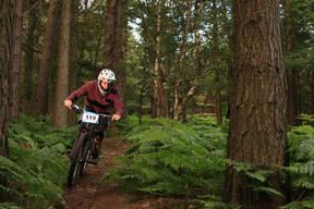 Photo of Stephen BEIRNE at Barnaslingan Forest