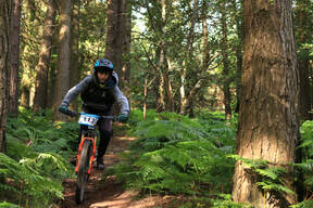 Photo of Patrick FLOOD at Barnaslingan Forest