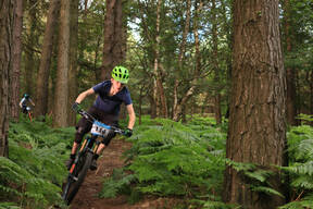 Photo of Lorcan DEERING at Barnaslingan Forest