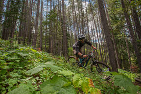 Photo of Oliver CEBULIAK at Crowsnest Pass