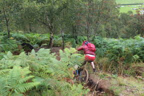 Photo of Rider 336 at Llangollen