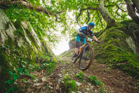 Photo of Harry REEDER at Dyfi Forest