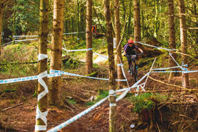 Photo of Andy ROBERTS (mas1) at Dyfi Forest