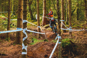 Photo of Archie BOX at Dyfi Forest