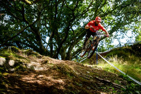 Photo of Liam TYRRELL at Dyfi Forest