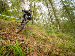 Photo of Jack HUSHER at Dyfi Forest