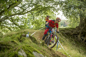 Photo of William TYRRELL at Dyfi Forest