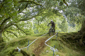 Photo of Emily COX at Dyfi Forest