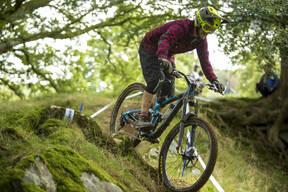 Photo of Chris EVANS (vet) at Dyfi Forest