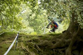 Photo of Martin LOVERIDGE at Dyfi Forest