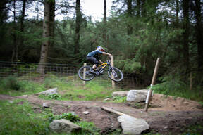 Photo of Adam DALY at Barnaslingan Forest