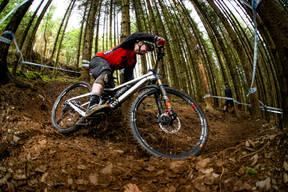 Photo of Mark MACKENZIE (vet) at Dyfi Forest