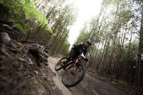 Photo of Ross DUNBAR at Swinley Forest