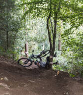 Photo of Paul KNIGHTS at Grogley Woods