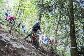 Photo of Rob STALLARD at Grogley Woods