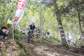 Photo of Noah LAKELAND at Grogley Woods