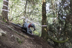 Photo of James DART at Grogley Woods