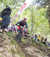 Photo of Will SOFFE at Grogley Woods, Bodmin